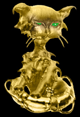 gold cat pendant, cat overboard